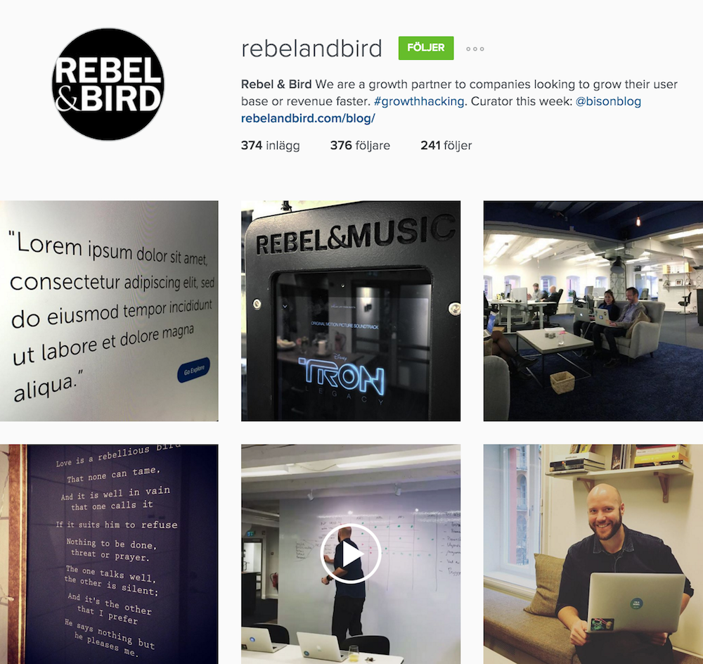 Rebel & Bird Instagram
